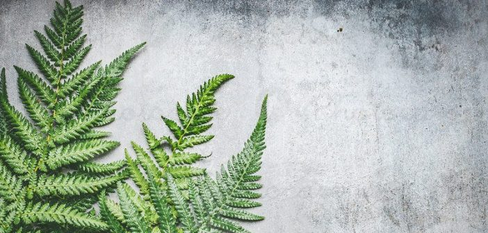 'Green' concrete set to revolutionise the construction industry