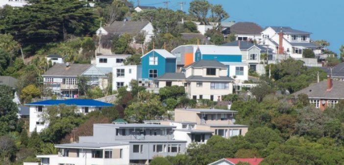 July brings price rises for all regions bar Auckland, says REINZ