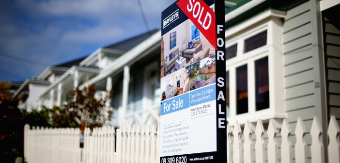 Auckland property market springs to life