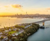 Which Auckland properties are dropping in value?