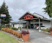 Well-known Taupo motel up for sale
