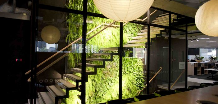 Benefits of greenwalls at home and in the workplace