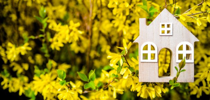 Strong Spring predicted for property market following lockdown